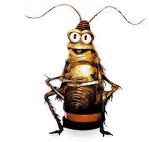 cucaracha1